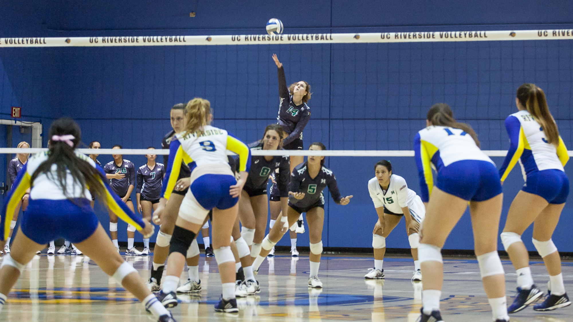 No. 14 Women's Volleyball Sweeps At UC Riverside; Taylor Climbs Up In Career Kills